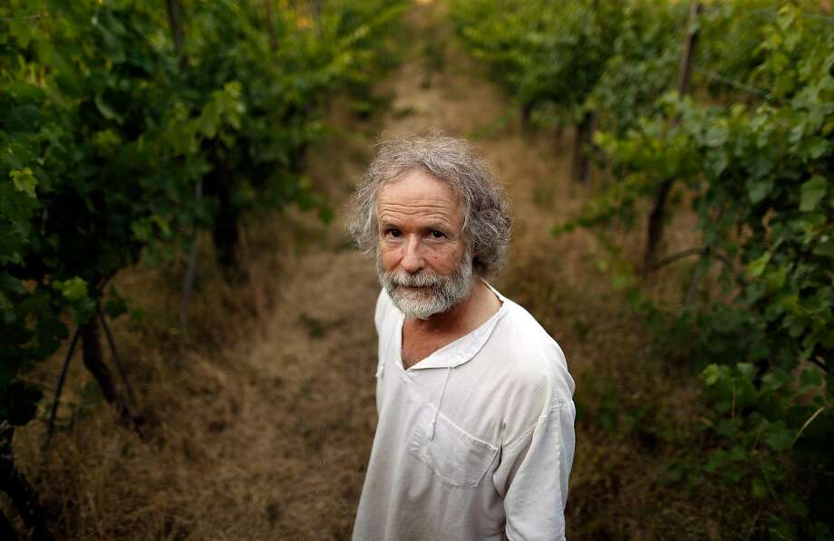 Gideon Beinstock stands among the vines on his property, which he calls the Home Vineyard, the source of wines for his Clos Saron. Photo: Carlos Avila Gonzalez / The Chronicle
