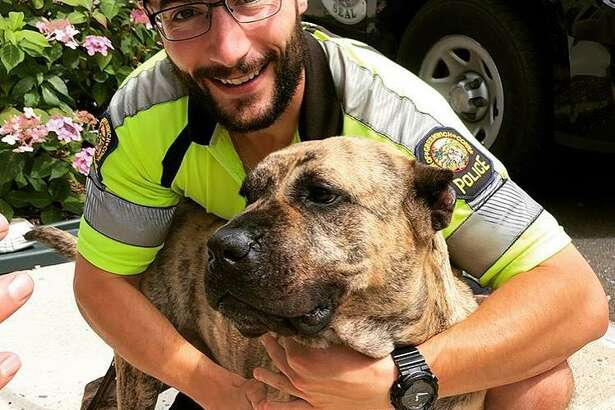 Greenwich police officer Pat O'Connor recently adopted a dog found wandering in a town park.