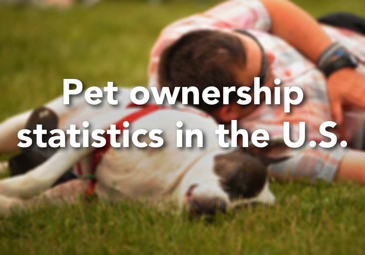 Here are the latest stats on pet ownership in the U.S.