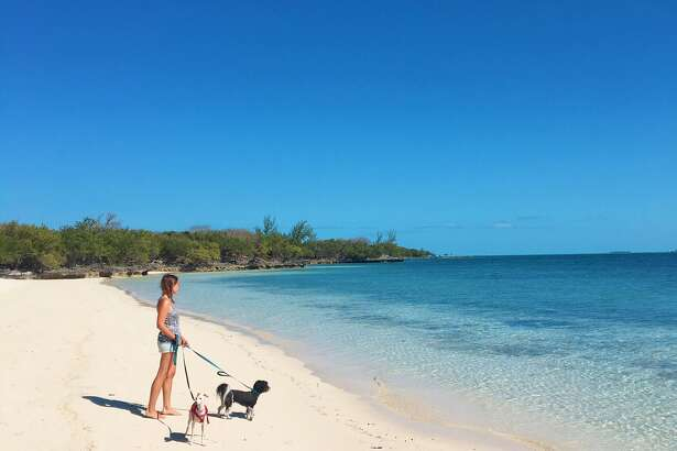 Beaumont natives John and Julie Hausen quit their jobs, sold everything they owned and bought a sailboat to travel the world with their two dogs, Mondo and Penny. The couple is currently traveling on land while waiting out hurricane season, which ends on Nov. 30.