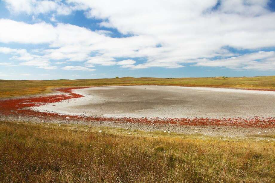 Abundance of prairie potholes and other natural wetlands, crucial to waterfowl production in Canada and north-central United States, declined 14 percent this year but remains close to the long-term (1974-2017) average. Photo: Shannon Tompkins / Houston Chronicle