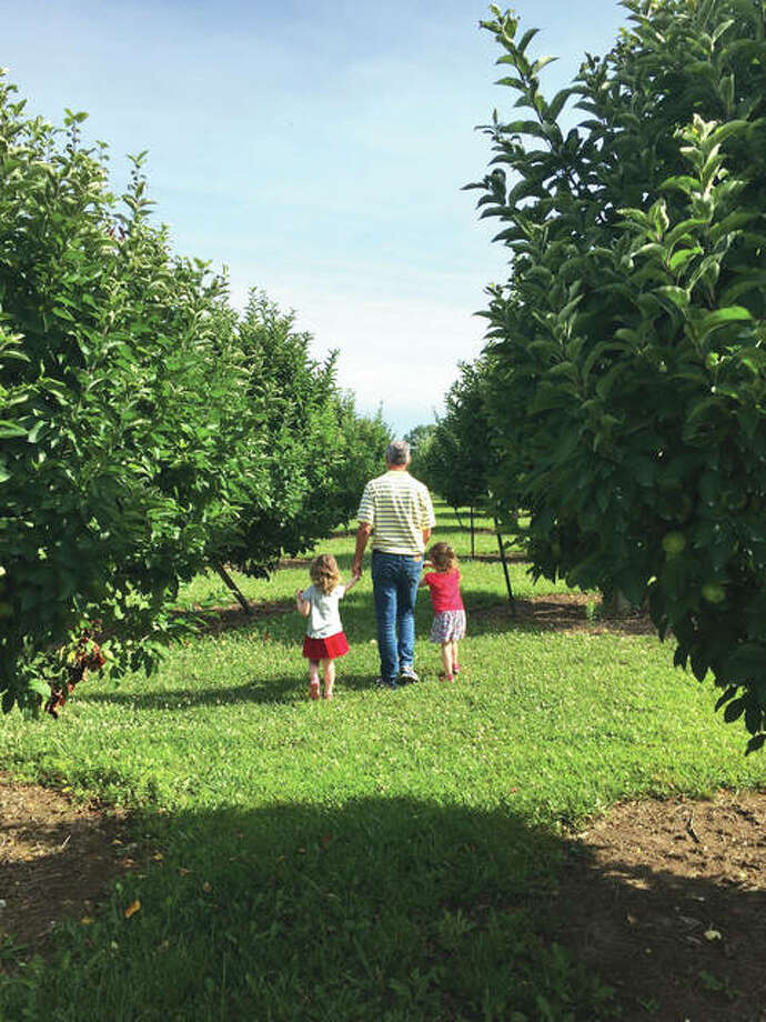A look inside Liberty Apple Orchard. Photo: For The Intelligencer