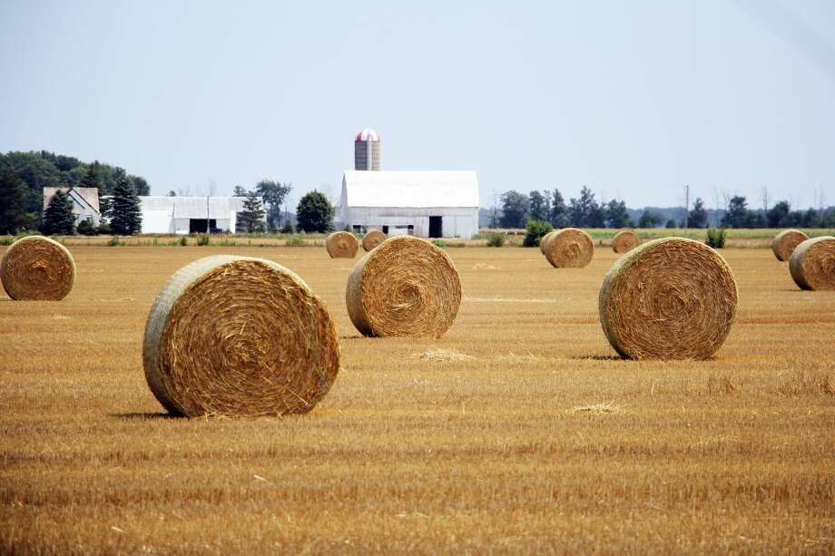 With the sight of straw bales each year comes the harrowing reminder that the end of summer nears. This scene was taken in a farm field at the corner of Sand Beach and McLennan roads. Photo: Seth Stapleton/Huron Daily Tribune