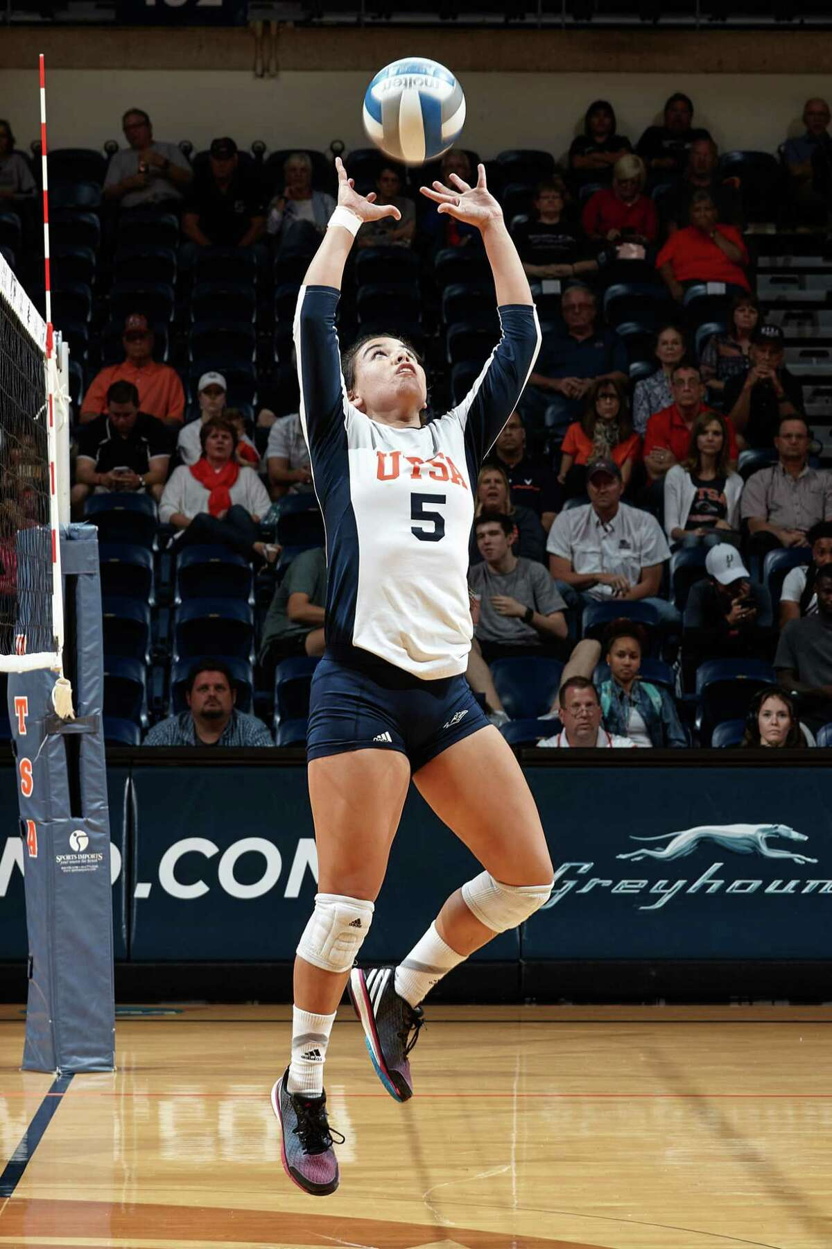 UTSA freshman setter Amanda Gonzales, a New Braunfels product, will be a major factor for the Roadrunners in the 2015 Conference-USA tournament. SAN ANTONIO, TX - OCTOBER 21, 2015: The University of North Carolina at Charlotte 49ers fall to the University of Texas at San Antonio Roadrunners 3-0 (25-19, 25-19, 25-19) at the UTSA Convocation Center. (Photo by Jeff Huehn)
