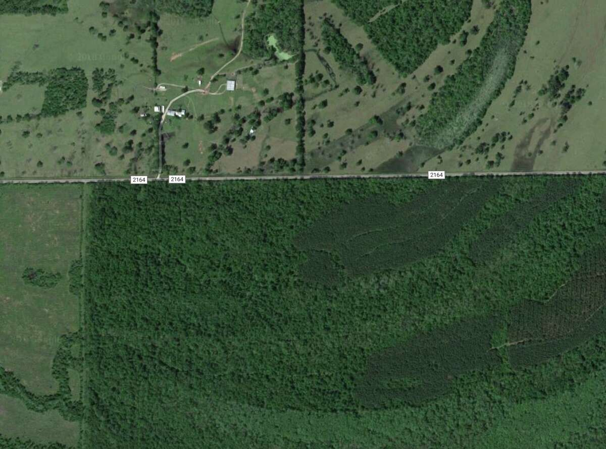 A logging truck driver is dead after being struck by a piece of lumber Wednesday in Liberty County.