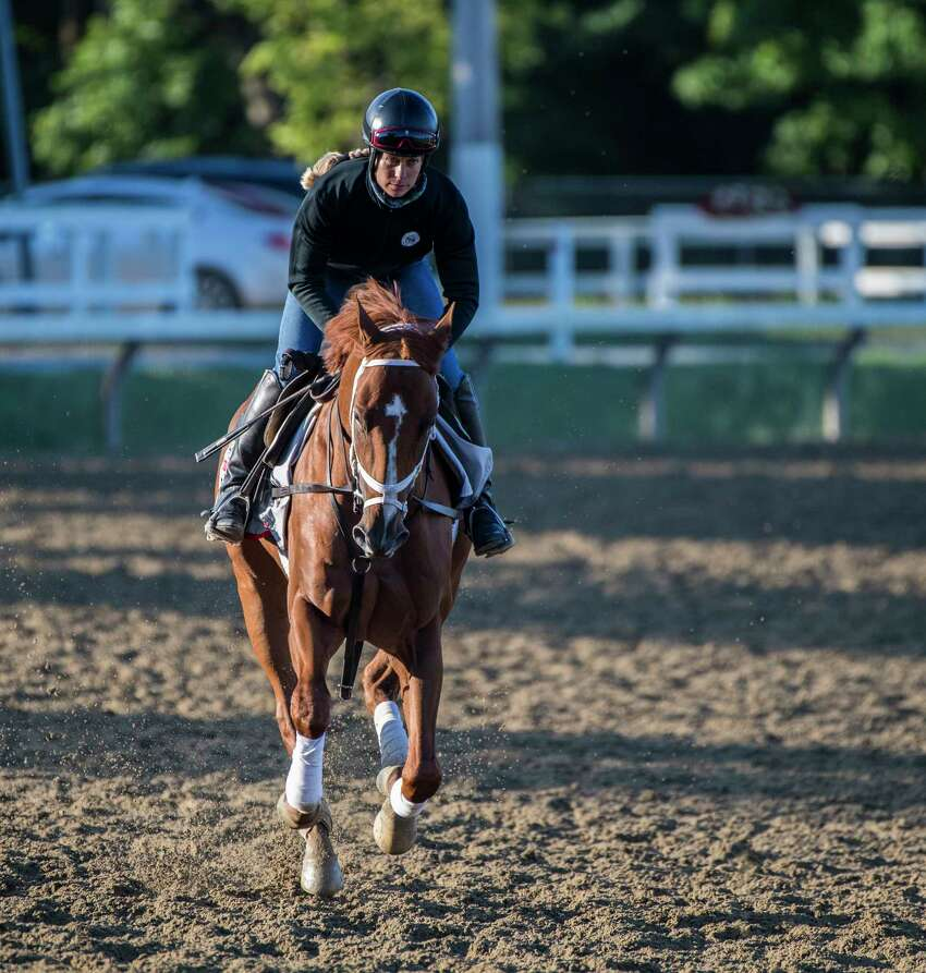Travers entrant Vino Rosso gallops on the main track with exercise rider Adele Bellinger at Saratoga Race Course this morning Thursday Aug. 23, 2018 in Saratoga Springs, N.Y. (Skip Dickstein/Times Union)