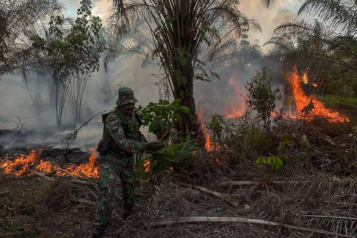 An Indonesian soldier extinguishes a fire at an oil palm plantation in Pekanbaru, Riau province, Sumatra on August 14, 2018. - Fires, due to