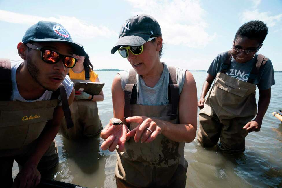 Dr. Allison Fitzgerald (wearing NY Yankee hat), an oyster program research assistant with NY/NJ Baykeeper, talks with students, workers and volunteers, associated with NY/NJ Baykeeper, as they collect marine life data in the waters near Soundview Park July 18, 2018 in New York. The Soundview oyster reef monitoring event brought the group together to perform hands-on oyster reef monitoring and data collection of oysters and other marine life. / AFP PHOTO / Don EMMERTDON EMMERT/AFP/Getty Images