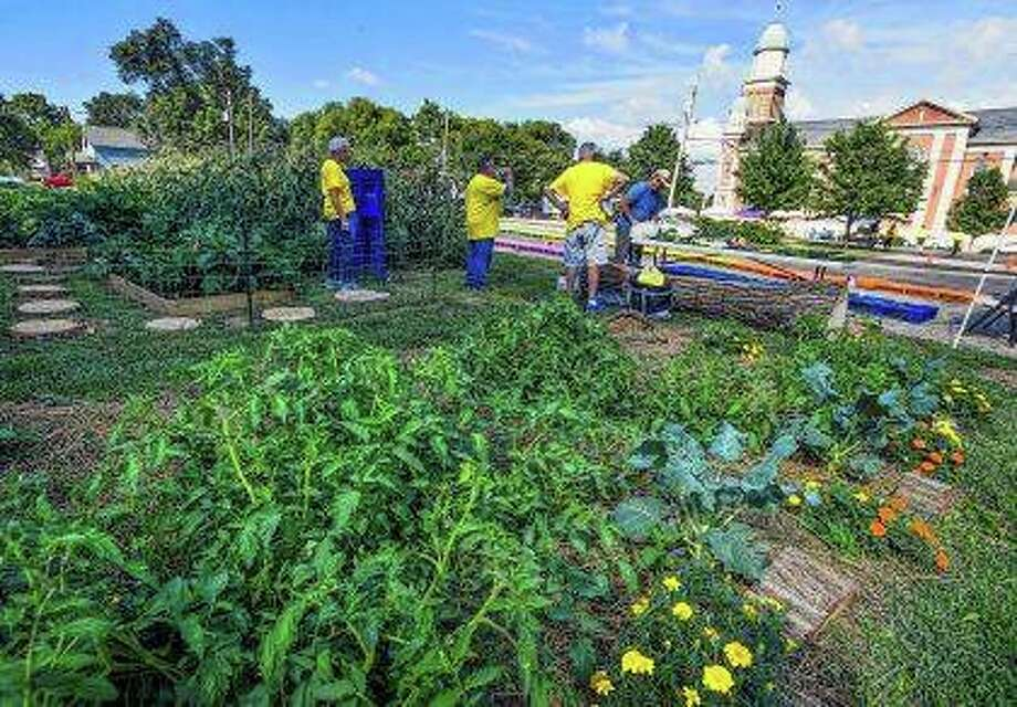 A vegetable garden near St. Ann Catholic Church in Peoria is a gathering spot for those attending the Garden of Hope. The garden got a lot bigger this year, and in the future it might encompass a good chunk of a city block. Photo: Ron Johnson | Journal Star (AP)