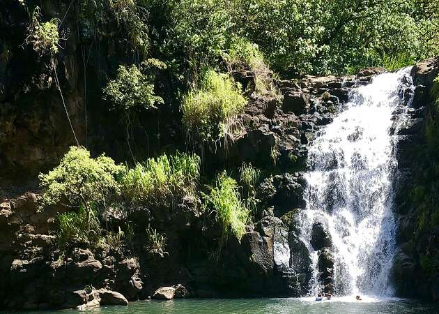 Oahu's Waimea Valley and an easy side trip during North Shore visit