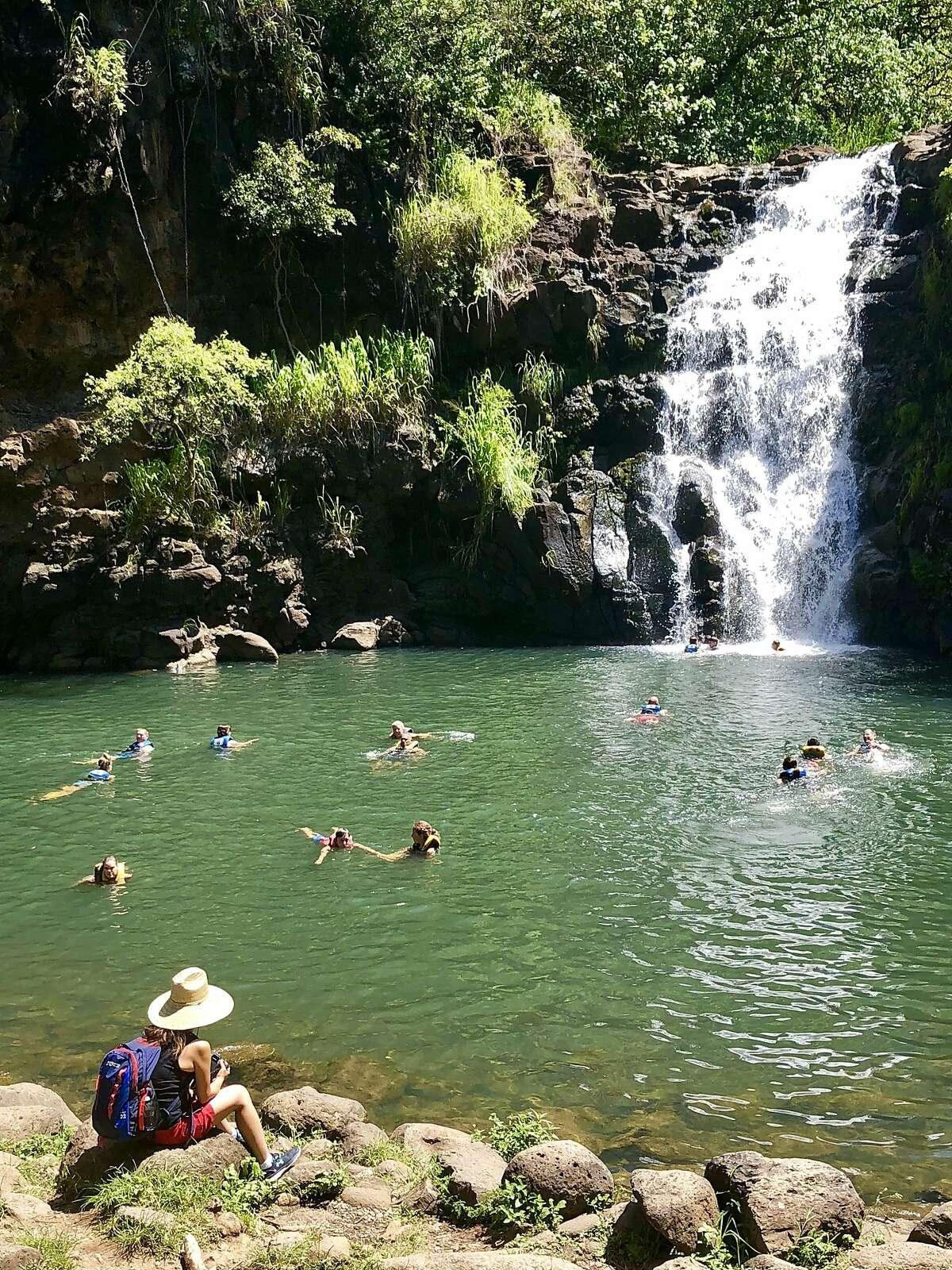 A waterfall awaits those who visit the Waimea Valley, home to the Kahuna Nui (high priests) from 1092 AD.