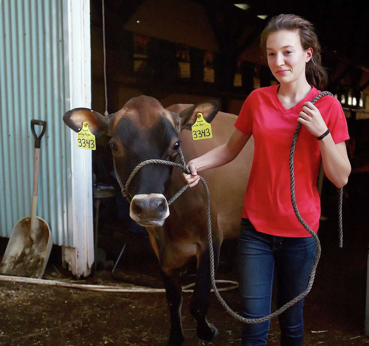 For 75-plus years, the North Haven Fair has been a friendly harbinger of autumn - with strolling jugglers, ox drawing, musical acts, racing pigs and (we notice this year) redneck horseshoes, which is played with toilet seats. It's back Thursday-Sunday. Find out more.