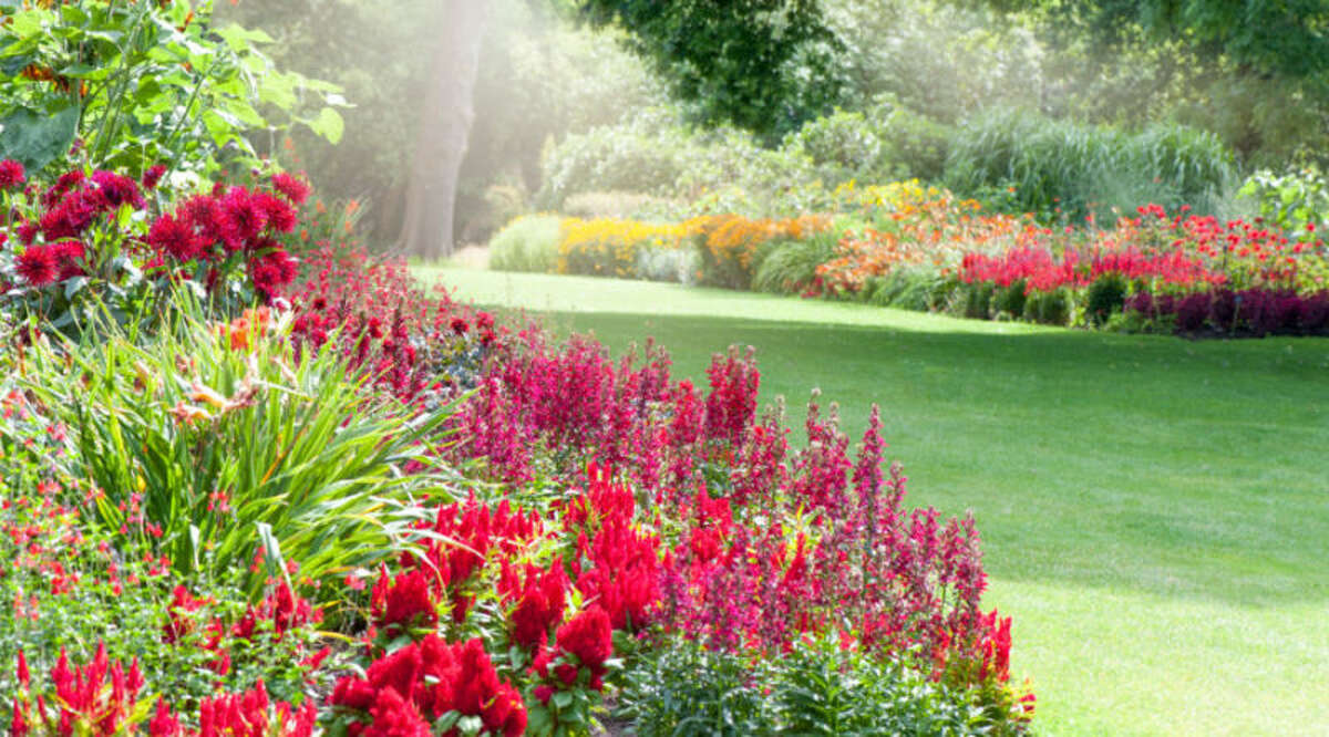 Space Things Out When thinking about how to slow the movement of a wildfire, space is key. Design your plantings in clusters that have adequate empty space between them rather than packing the garden with plants standing shoulder-to-shoulder.