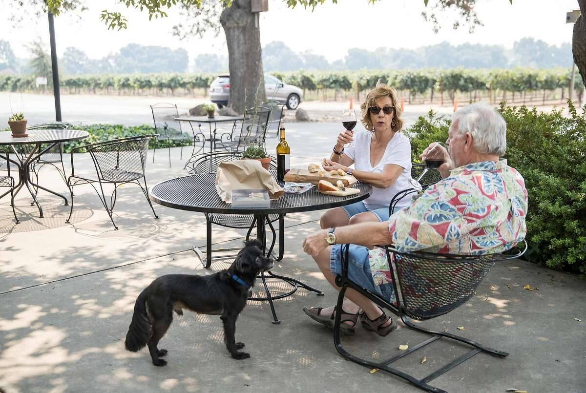 Heritage Oak Winery dog Cusco keeps an eye on visitors to the winery Joleen Shamy and Dennis Richardson (right) as they enjoy wine and food on the patio at the winery in Acampo, Calif., on Sunday, August 5, 2018. The dog-friendly winery has a great patio outside their tasting room, water available for dogs and a walking path down to the river.
