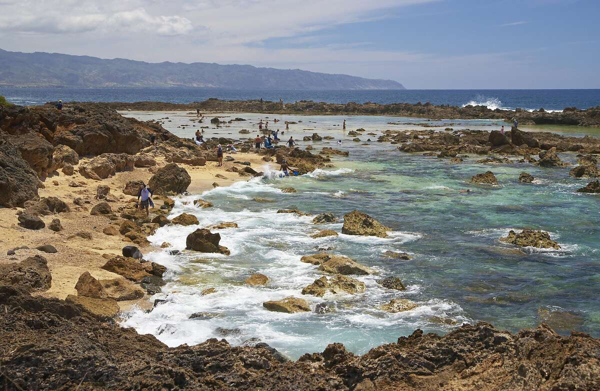 People at snorkeling area at the coast, North Shore, Oahu, Hawaii, USA, America