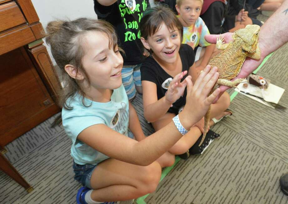 Annabelle Schultz and Siena Criscuolo get to pet a Bearded Dragon being held by Brian Kleinman with Riverside Reptiles during a Harry Potter Camp fundraiser at the Wilton Library on Tuesday August 28, 2018 in Wilton Conn. Photo: Alex Von Kleydorff / Hearst Connecticut Media / Norwalk Hour