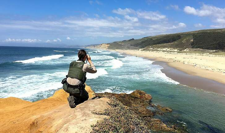 Game Warden Gaba Stauffer of the California Department of Fish and Wildllife on a bluff-top cliff surveilling Pescadero State Beach on the San Mateo County coast