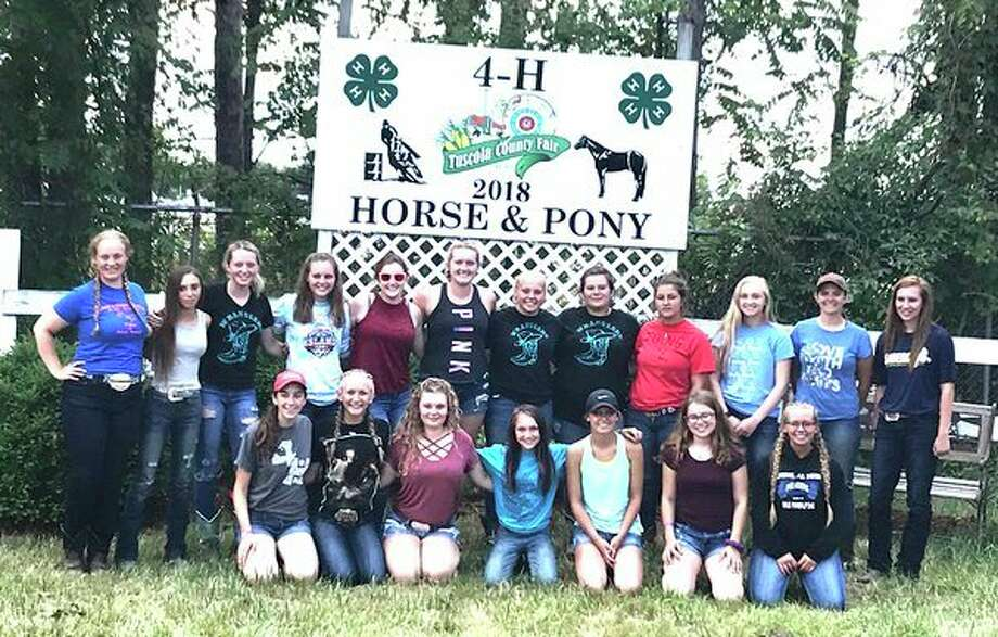 Competing in the Michigan State Horse Show were, back row, Alyssa Fountain, Dakota Dahlke, Madison Wiseman, Marissa Anderson, Clarissa Rose, Julia Boyce, Elissa Bicego, RayAnn Harp, Cheyenne Claypool, Hannah Hawks, Angela Daily and Heather Cooper; front row, Emily Titus, Klohie Roche, Rachel Zawerucha, Tanger Springsteen, Lainey Zwerk, Kaitlyn Crumby and Kerra Elling. (Submitted Photo)