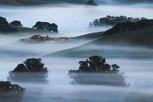 Dream Land in Petaluma by @vincentjamesphotography