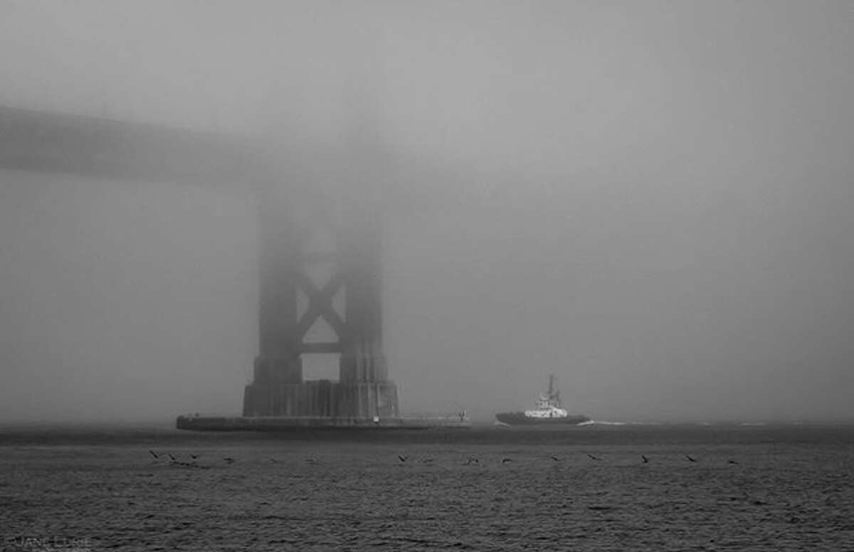 Hard to see the Golden Gate Bridge in Fogust. Photo by @janeluriephotography