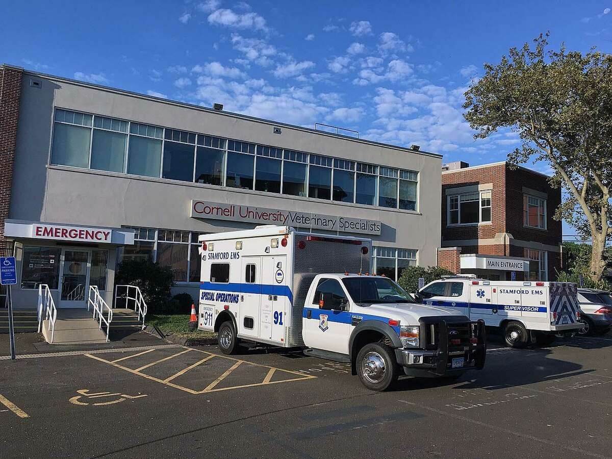 Stamford, Conn., emergency medical services helped a veterinary center on Aug. 30, 2018, after the system noticed a problem with its oxygen system.