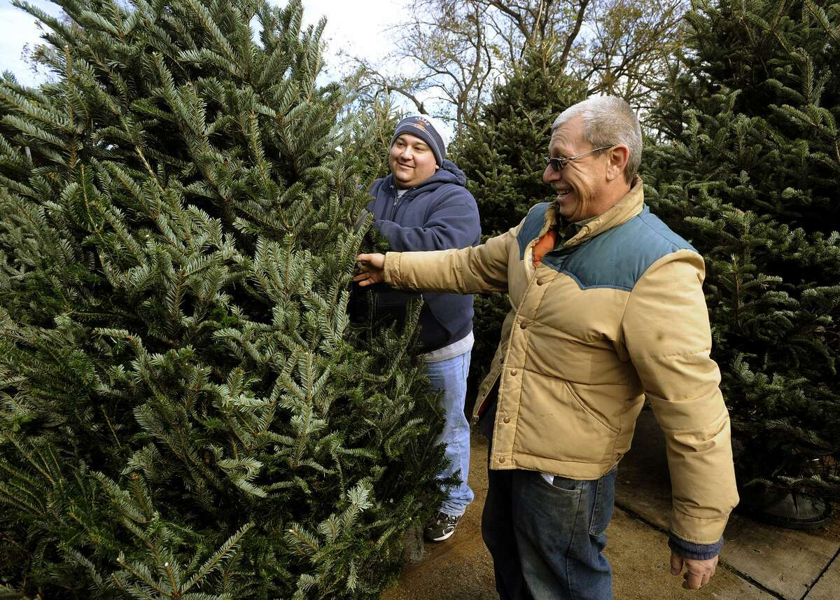 This 2011 file photo shows Christmas tree shopping at Schulz Nursery.