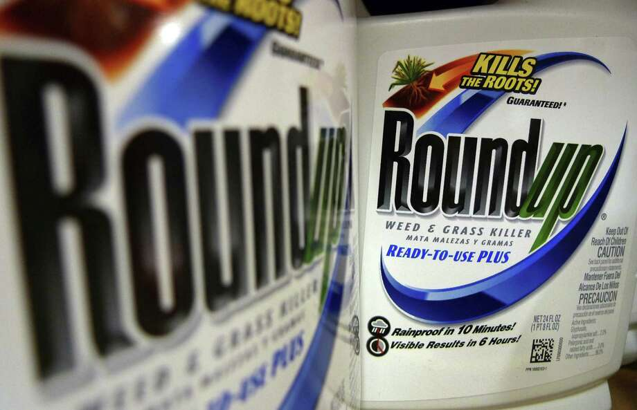 A San Francisco jury last month ordered agribusiness giant Monsanto to pay $289 million to a former school groundskeeper dying of cancer, saying the company's popular Roundup weed killer contributed to his disease. Photo: Jeff Roberson / Associated Press / Copyright 2011 The Associated Press. All rights reserved.