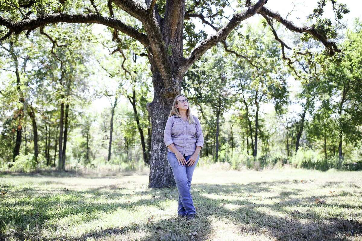 Carolyn White, conservation director for the Memorial Park Conservancy, has been innoculating stressed trees with biological treatments created from the compost of other trees that didn't survive.
