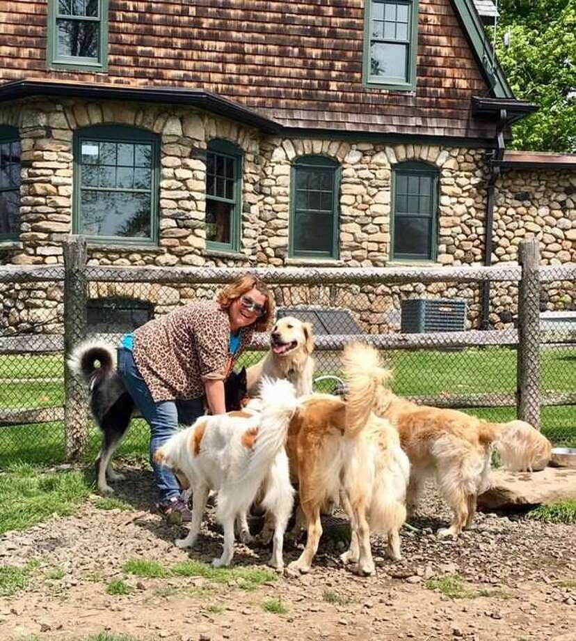 "New Canaan Dogs' Kristen Schilo surrounded by her ""clients."" Photo: Contributed Photo / New Canaan News contributed"