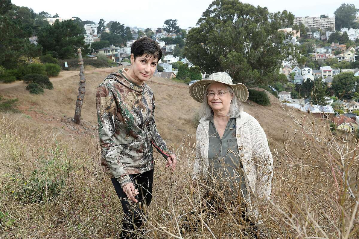 Concerned neighbor and artist Jane Lidz (left) and Betsy Eddy (right) show dry grass and brush on top of Bill Goat Hill on Friday, Aug. 31, 2018, in San Francisco, Calif. Betsy Eddy is helping spearhead an effort through a neighborhood group called Resilient Diamond Heights to bring awareness to the possible fire dangers in the area in parks such as Glen Canyon, Billy Goat Hill and Miraloma Park.