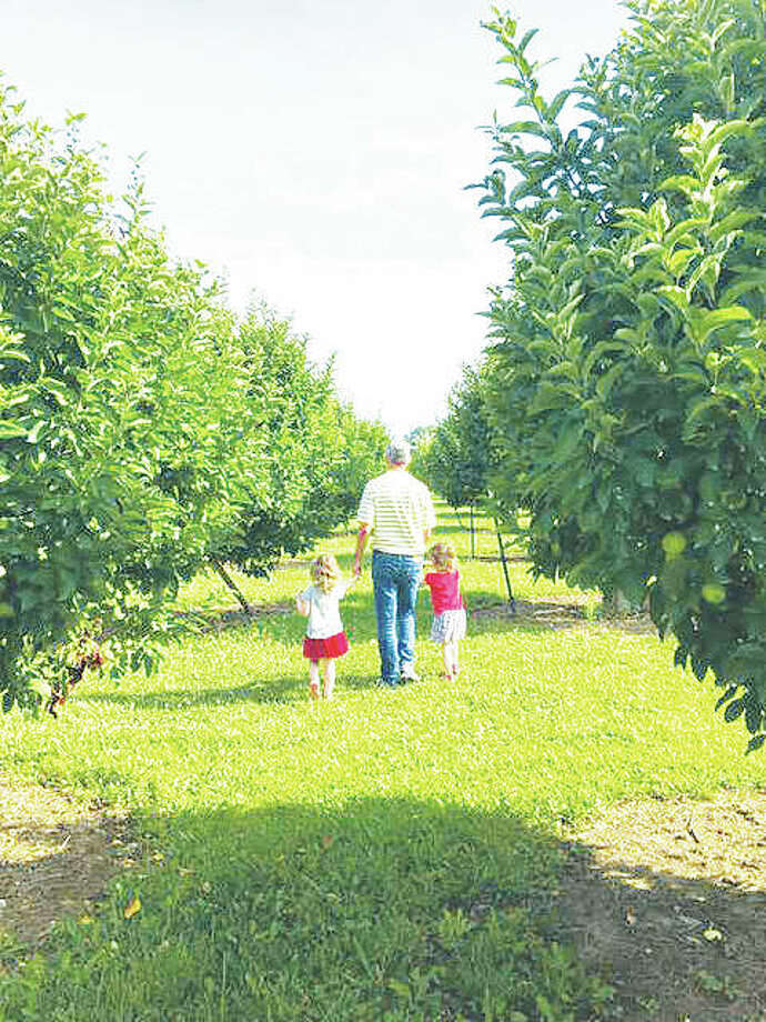 A look inside Liberty Apple Orchard, at 8308 Kuhn Station Road, just east of Edwardsville, is open for the U-pick season. The orchard features 13 varieties of apples and a one-room schoolhouse on the grounds. Photo: For The Telegraph