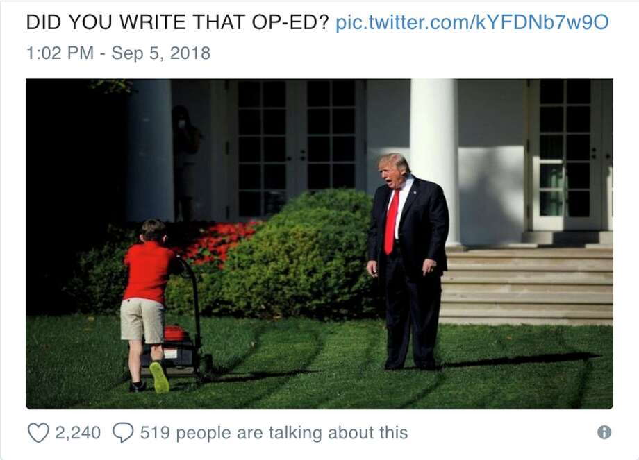 An anonymous New York Times op-ed by a White House staffer in the 'Trump resistance' has inspired a flurry of amusing memes. Photo: Twitter Screen Grab