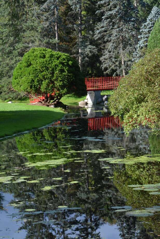 Reflections seen at Dow Gardens in September 2018. (Photo provided/P3 Images) Photo: Photo Provided/P3 Images