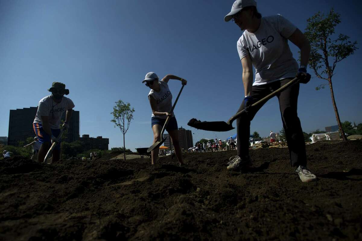 From left, Anuj Chhabra of New York City, Emily Cotterell of New York City and Jeannett Alindogan of Ridgefield scoop dirt while preparing an area before planting trees while volunteering at Mill River Park in downtown Stamford, Conn. on Wednesday, Sept. 5, 2018. The Back Porch will be an all-season community space and include a dog run, beer garden, bocce courts, fire pits and a children's play zone.
