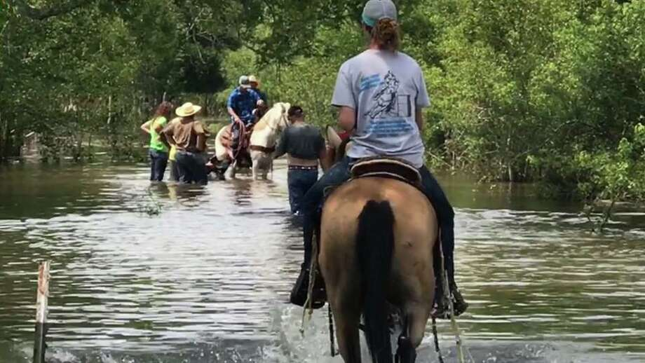 Hill rides her horse into flood waters as she works to rescue livestock in the aftermath of Harvey. Photo: Melisa Hill, Melisa Hill