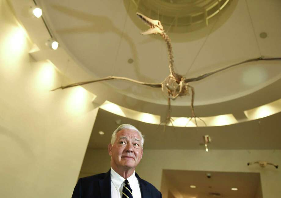 Bruce Museum Executive Director Peter Sutton poses by a skeleton replica of the extinct bird Pelagornis at the Bruce Museum in Greenwich, Conn. Thursday, Sept. 6, 2018. Sutton announced his retirement Wednesday after serving 17 years as Executive Director. A scholar of Dutch and Flemish art, Sutton is credited with advancing the museum's mission and transforming it from an institution displaying exhibits of local interest into one of the most dynamic mid-size museums in the region with over 78,000 visitors a year. Photo: Tyler Sizemore / Hearst Connecticut Media / Greenwich Time
