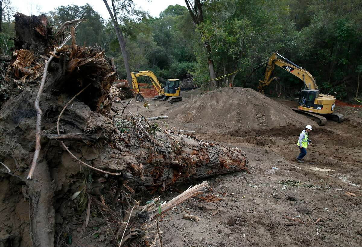 Heavy equipment is used to build a manmade flood plain channel along Lagunitas Creek in Olema, Calif. on Wednesday, Sept. 5, 2018. The project removes more than 13,000 cubic yards of dirt and abandoned buildings creating side channels along a one-mile stretch of the creek that will become a refuge for young trout and salmon.