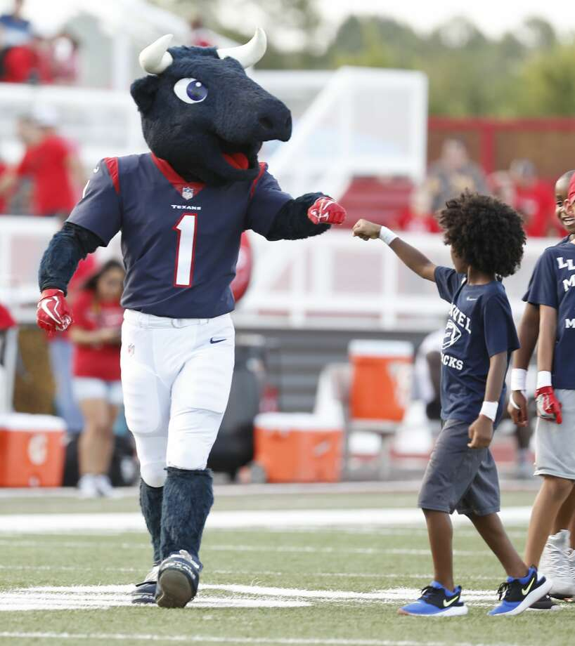 Toro - Houston Texans Surprise! Did you know the Texans have an official mascot that isn't J.J Watt? We sure didn't, so that makes Toro an underrated, rare mascot.   Our score: 9/10 Photo: Karen Warren/Staff Photographer