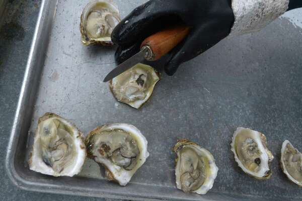 Oysters from Copps Island Oyster Co. are shucked fresh for The Norwalk Seaport Association 41st Annual Oyster Festival Saturday, September 8, 2018, at Veterans Memorial Park in Norwalk, Conn.