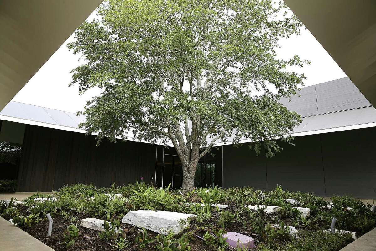 The Menil Drawing Institute is slated to be open in November.