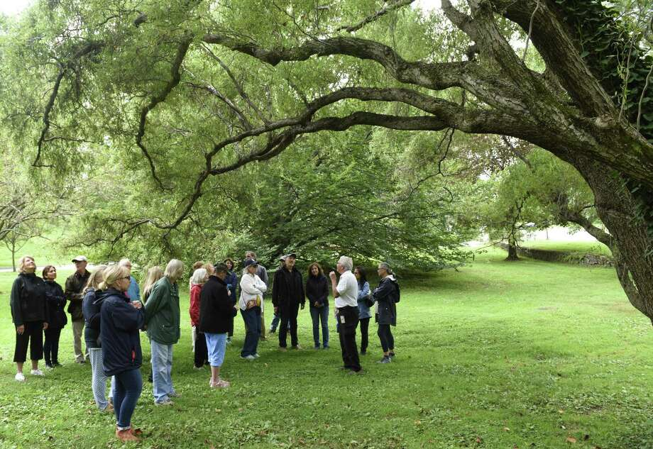 Greenwich Tree Warden Bruce Spaman shows a corkscrew willow tree to a group during the Tree Walk at Byram Park in the Byram section of Greenwich, Conn. Sunday, Sept. 9, 2018. Hosted by the Greenwich Tree Conservancy, the walk helped folks identify the many stately longstanding trees of Byram Park by describing the trees' identifying characteristics. Photo: Tyler Sizemore / Hearst Connecticut Media / Greenwich Time