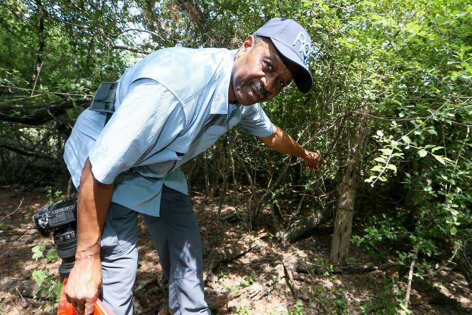 Local historian Everett Fly points to a cedar fence post on the northern boundary of the site of the Winters-Jackson cemetery, an African American graveyard on the Northeast Side that dates to the late 1800s, on May 31, 2018. He will speak Tuesday night, Sept. 11, 2018, from 6:30 to 8:30 p.m. at the Esperanza Peace and Justice Center, 922 San Pedro Ave. Photo: Marvin Pfeiffer /Staff Photographer / Express-News 2018