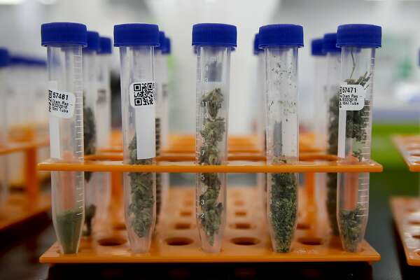 Big recall ordered of pot products after lab is caught faking tests