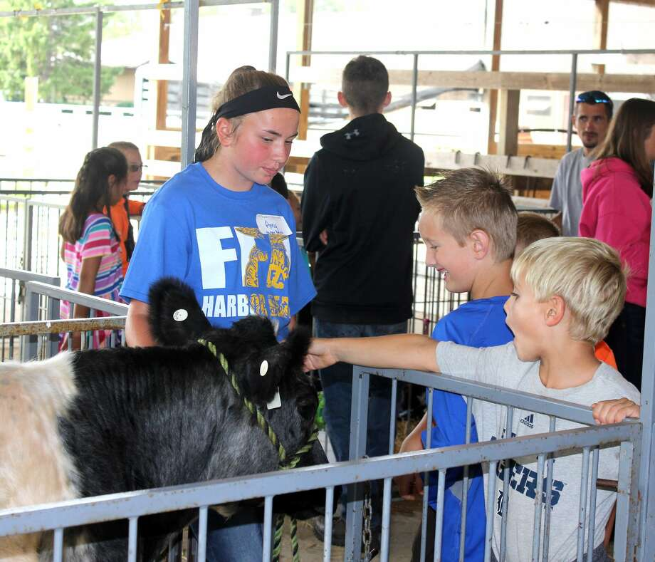 Amy Zurek, a Harbor Beach FFA member, talks to Brendan Aeder (center) and Drake Hamilton Tuesday about her feeder steer during this year's Project RED at the Huron Community Fairgrounds. Third graders from Huron County schools attended the one-day event to learn about local agriculture. Photo: Brenda Battel/Huron Daily Tribune