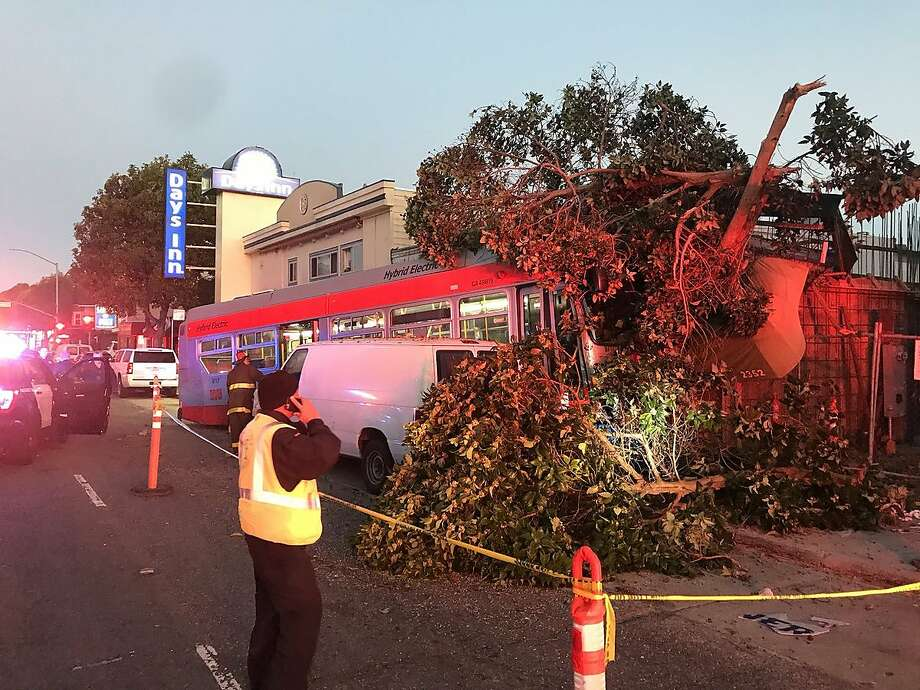 A Muni bus plowed into a dry cleaner and a tree on Lombard Street early Monday morning. Photo: Demian Bulwa / Demian Bulwa