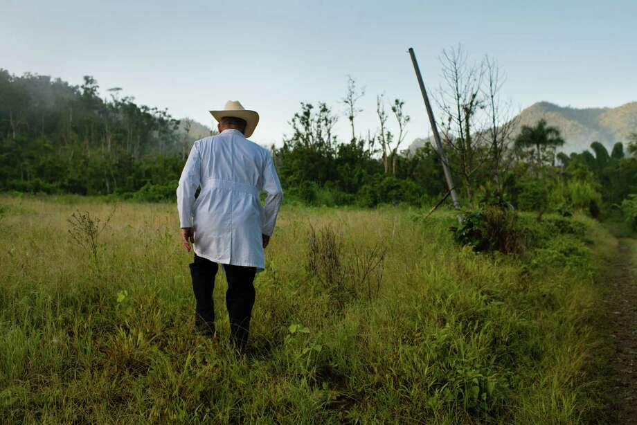 Arthur Siemon walks though a field where he had planted 15,000 coffee seedlings before Hurricane Maria devastated the crop a year ago. He owns the specialty coffee brand, Cafe de Puta Madre in Adjuntas, Puerto Rico. Photo: Washington Post Photo By Sarah L. Voisin / The Washington Post
