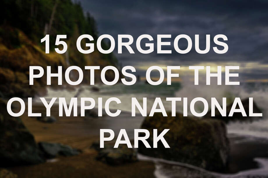 Click through to see amazing photos of the Olympic National Park. Photo: Getty Images / Viktor Posnov