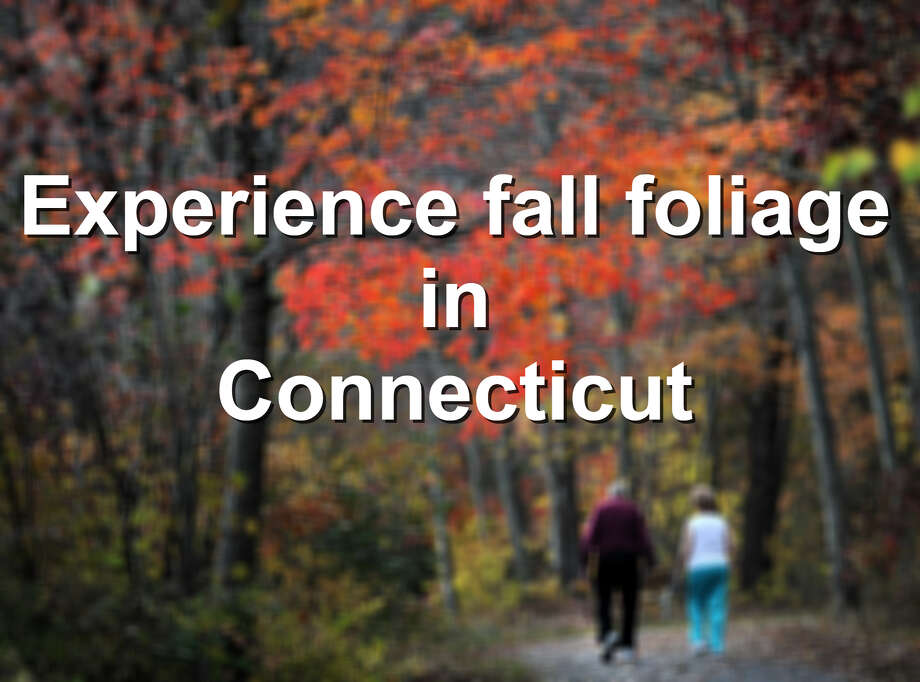 Unplug: Experience fall foliage in Connecticut