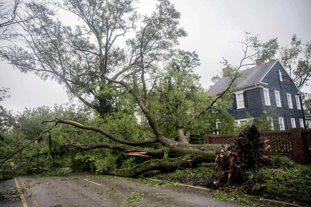 A fallen tree lies in front of a home during Hurricane Florence in downtown Wilmington, North Carolina, U.S., on Friday, Sept. 14, 2018. Bloomberg Hurricane Florence is delivering driving wind, pelting rain and torrential flooding to North Carolina, killing at least two people as it grinds through the region. Photographer: Alex Wroblewski/Bloomberg