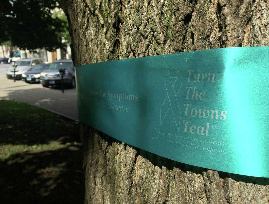 """A teal ribbon promoting """"Turn the Towns Teal"""" is tied around a tree in front of the Board of Education in Greenwich. The campaign promotes awareness of the risk factors and often subtle symptoms of ovarian cancer for National Ovarian Cancer Awareness Month. An event will take place on the steps of Greenwich Town Hall at 6:15 p.m.Monday, when lights on the building will be changed from white to teal to encourage awareness of the disease. Photo: Tyler Sizemore / Hearst Connecticut Media / Greenwich Time"""